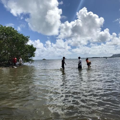 Volunteers carrying the rocks/coral across the inlet
